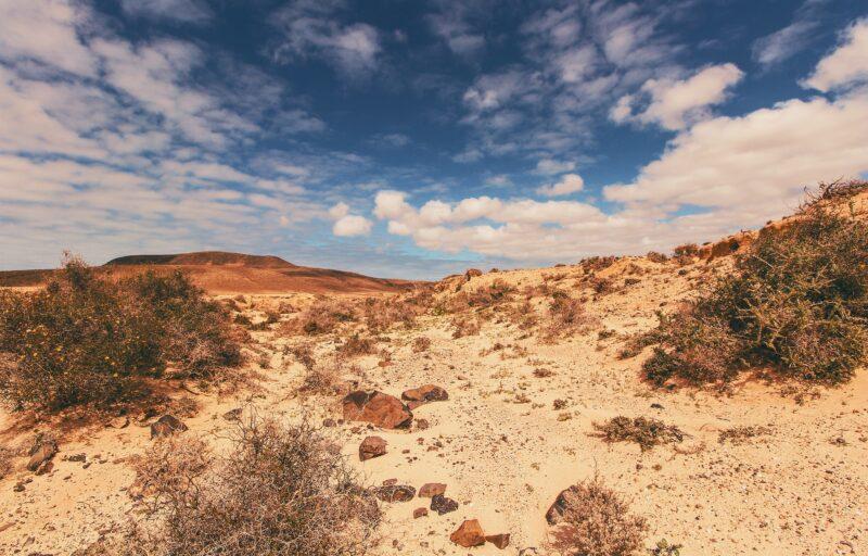 empty_desert1