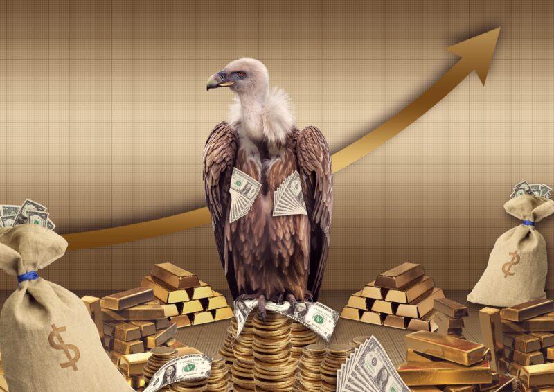 vulture-4212214