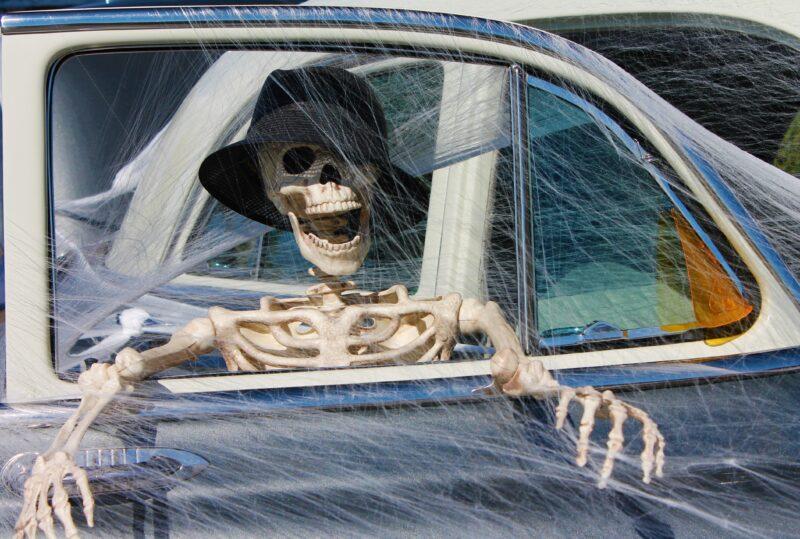 skeleton-1784621
